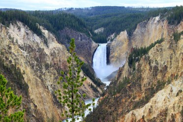 Upper Falls in Yellowstone National Park