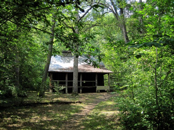 The historic cabin on the trail to Pulltite Spring was built in the vertical log style. The Park Service plans to someday restore it.