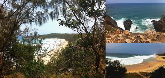 Noosa Nationalpark -Coastal Track