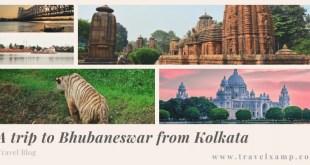 Trip to Bhubaneswar