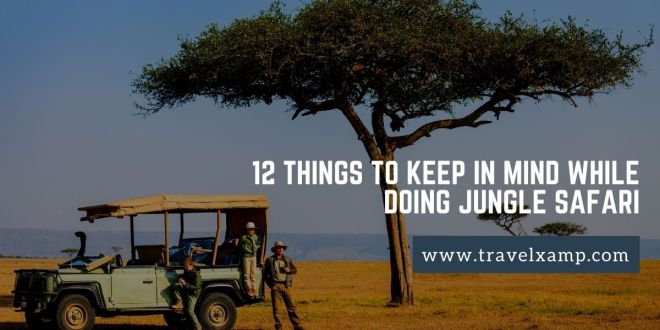 12 Things to Keep in Mind While Doing Jungle Safari