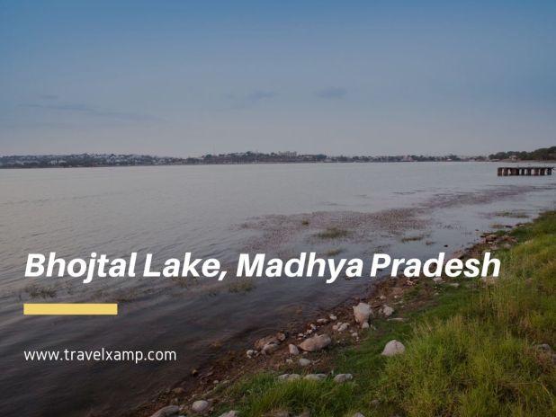 Bhojtal Lake, Madhya Pradesh