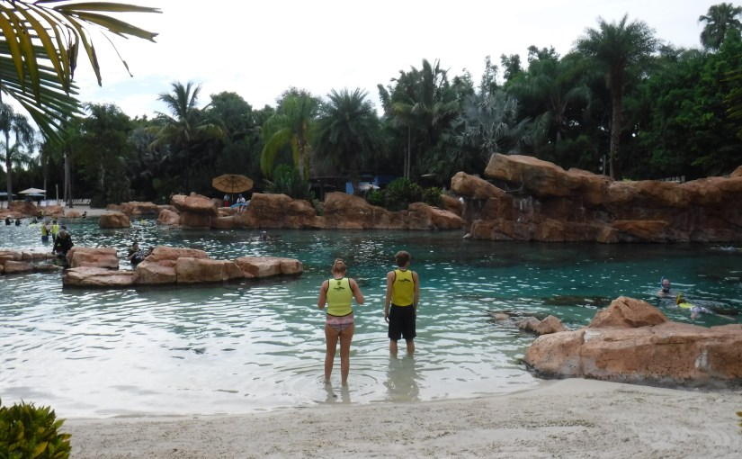 Discover Discovery Cove
