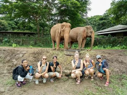 Chiang Mai Elephant Nature Park Group shot