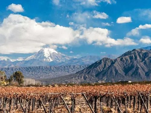 Mendoza vineyard views unreal itinerary