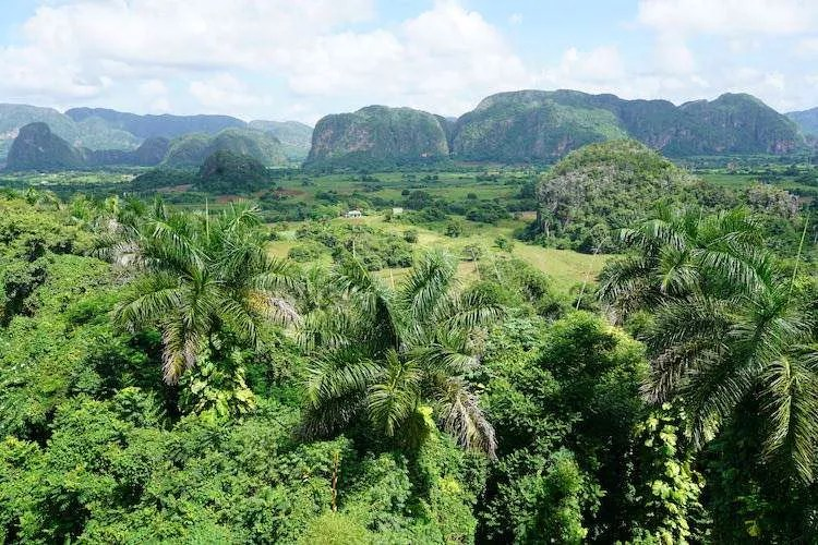 Vinales Valley is so green