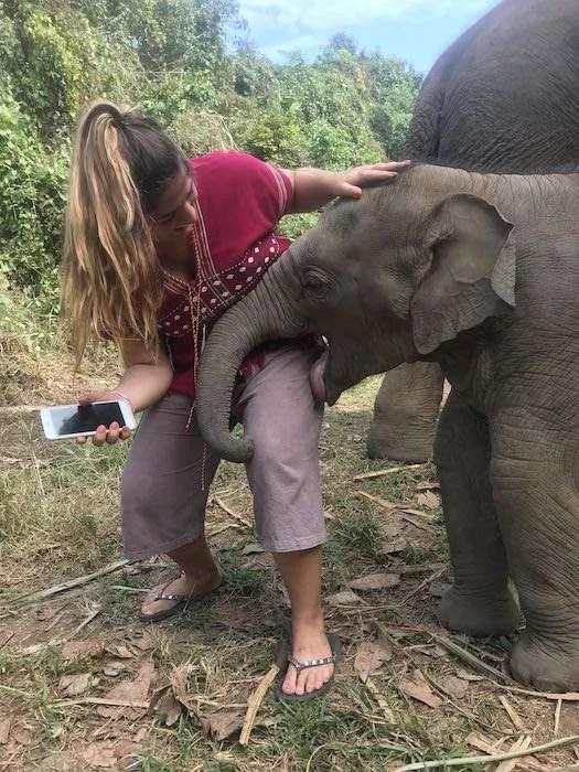 3 month old elephant kiss