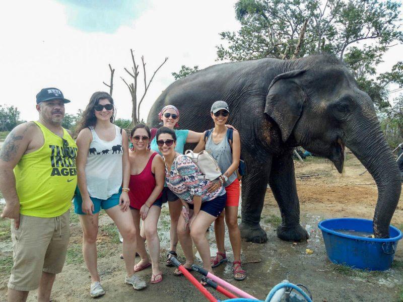 Pre elephant bath Thailand