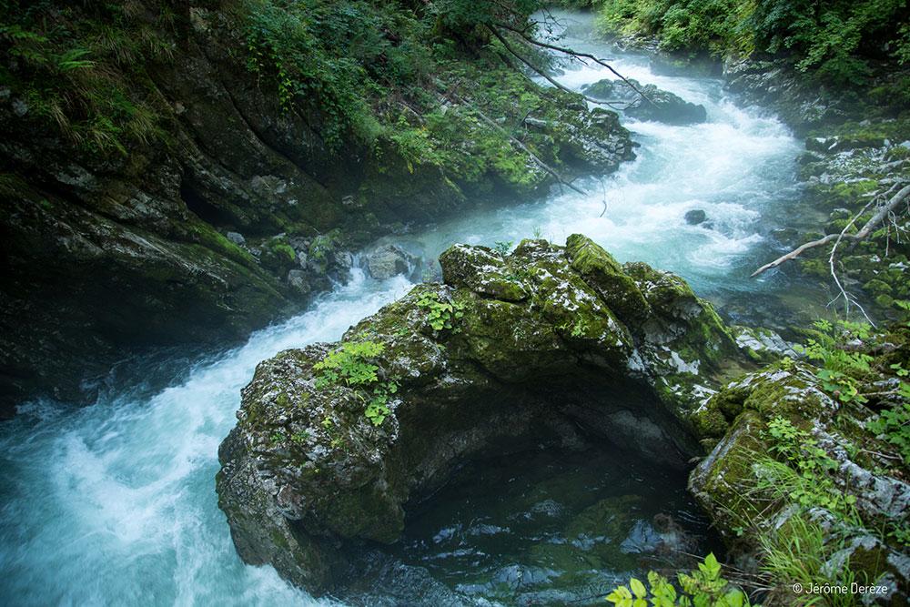 Visiter Bled - Visiter les gorges de Vintgar