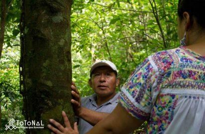 Turismo regenerativo como nuevo paradigma: Entrevista con Sonia Teruel