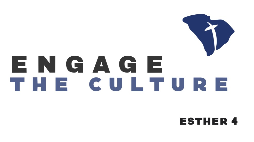 Engage the Culture