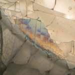 Caffeine by Polarized Light Microscopy