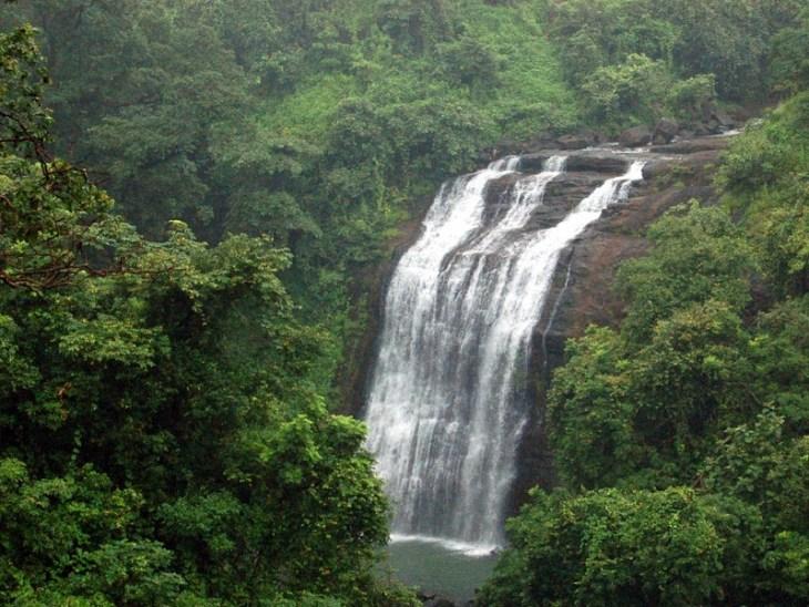 Image result for Vihigaon