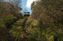 Image result for trax and trails callington gallery