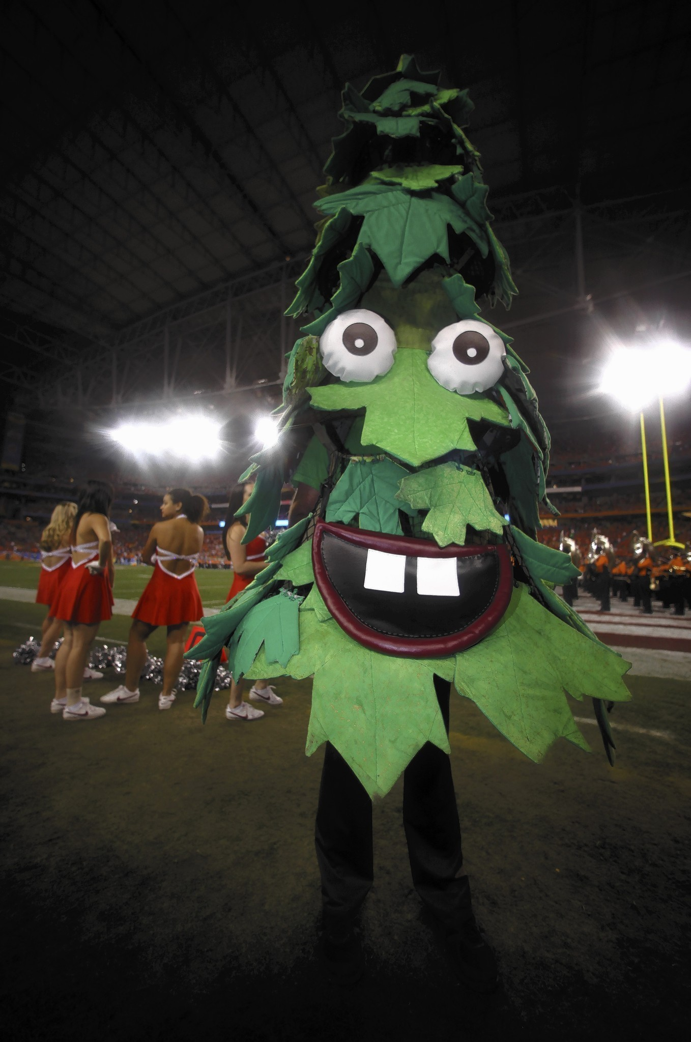 10 Things You Might Not Know About Mascots Chicago Tribune