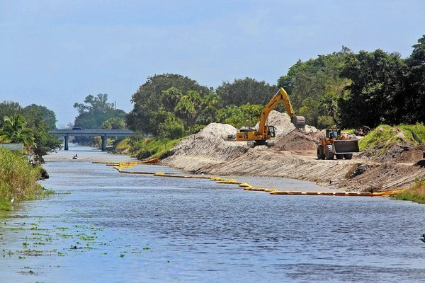 Work to remove trees and docks along the Hillsboro Canal