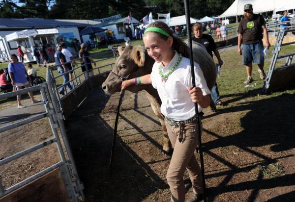 Harford Farm Fair Livestock Auction Marks End Of Year