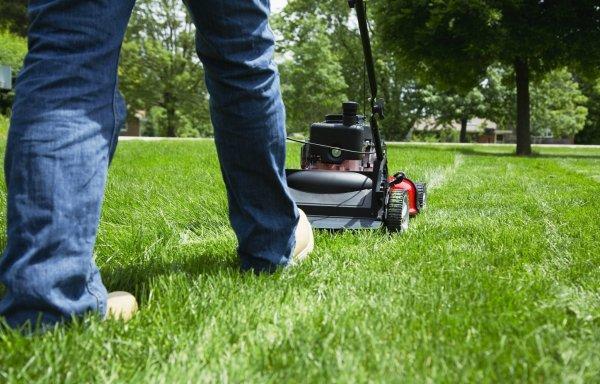 lawns soul-crushing timesuck