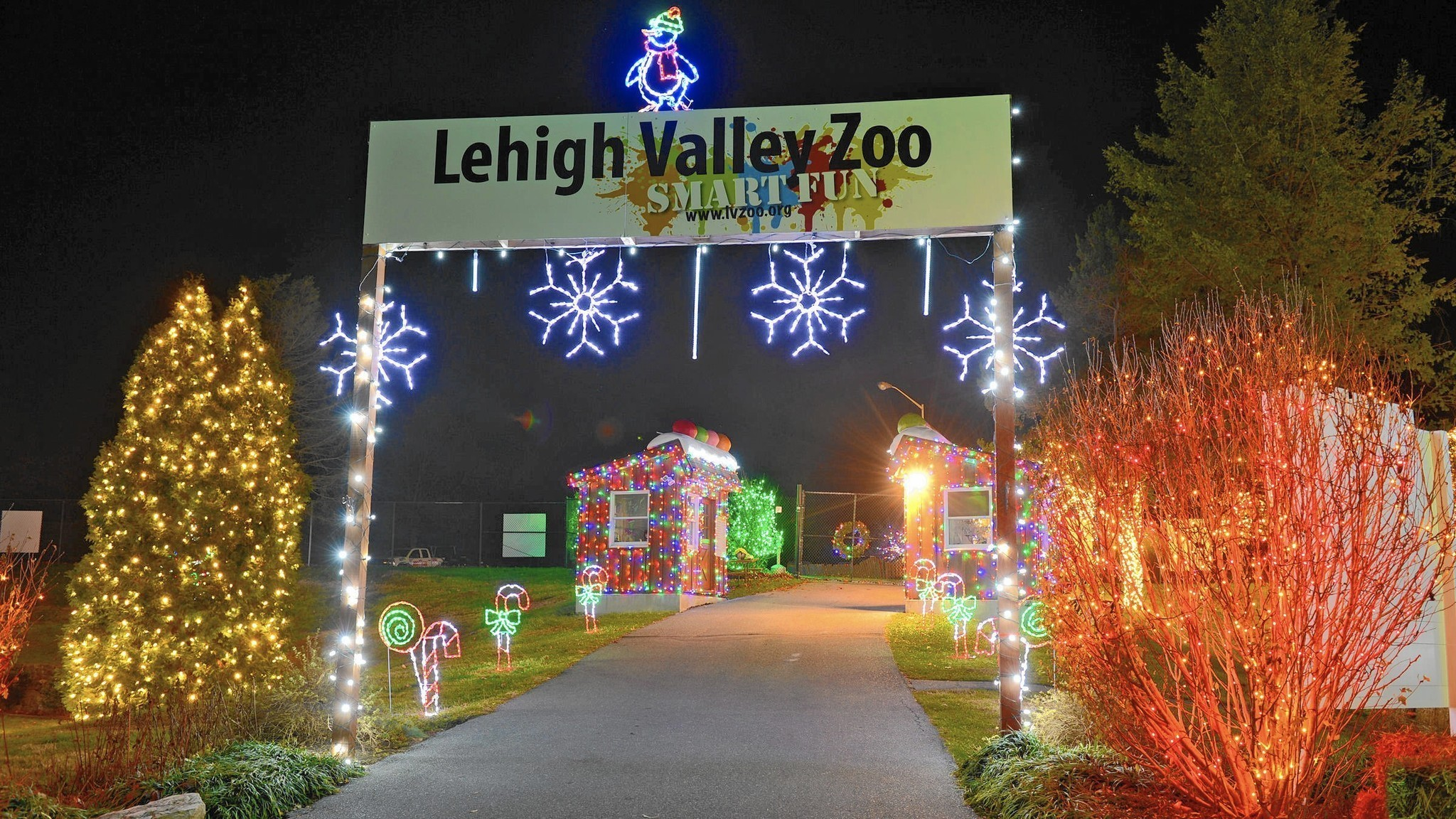 Marijuana Animated Wallpaper Lehigh Valley Zoo S Winter Light Spectacular Returns