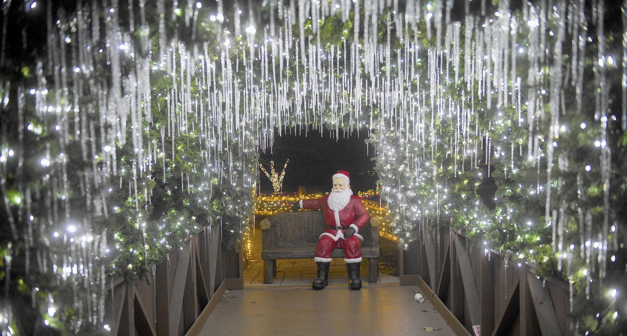 Lehigh Valley Zoos Winter Light Spectacular Shines
