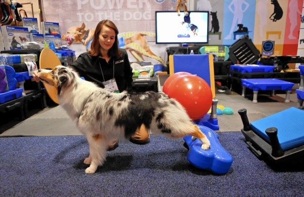 Global Pet Expo Shows Weird Wonderful Waste-worthy