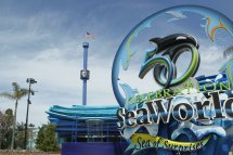 Seaworld Lead Of Disney And Universal