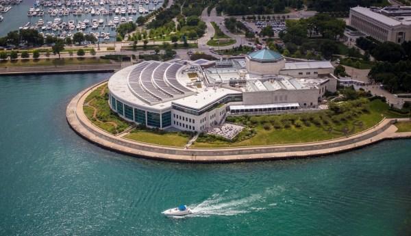 Shedd Aquarium Close Public 2 Days - Chicago Tribune