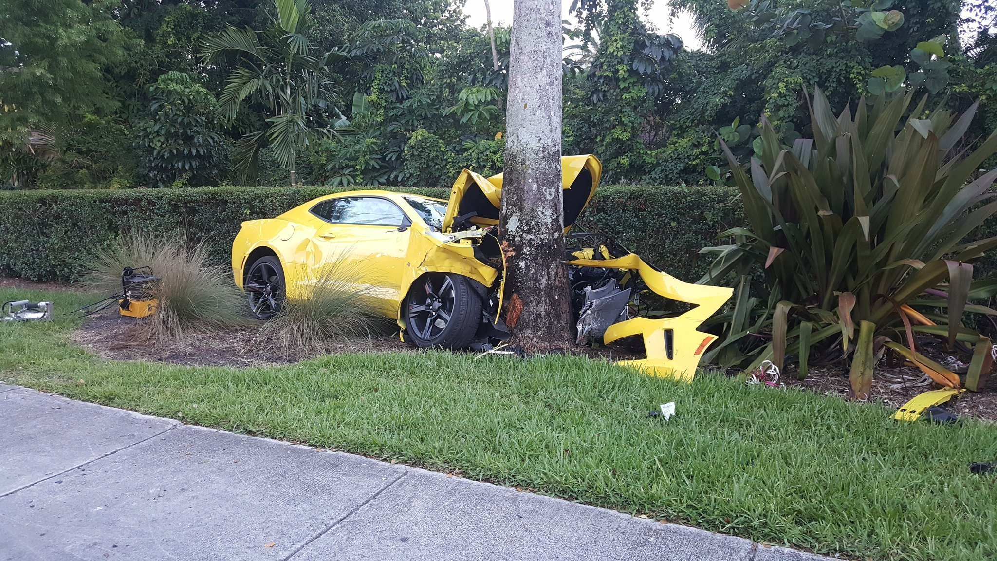 Car crashes into tree woman dies  Sun Sentinel
