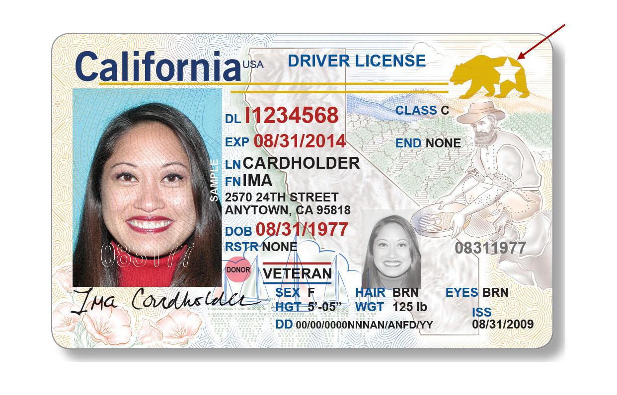 California Ebt Card Number
