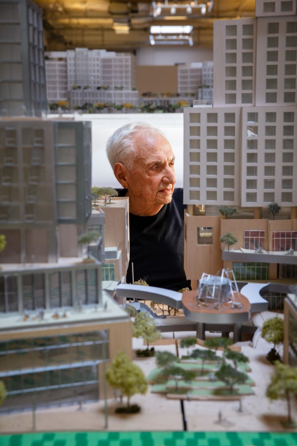 Frank Gehry And Imagine Grand Avenue