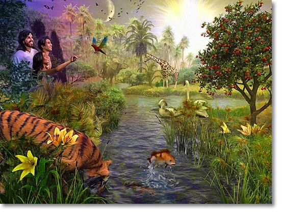 Open door to paradise treading water til jesus comes for Creation gardens