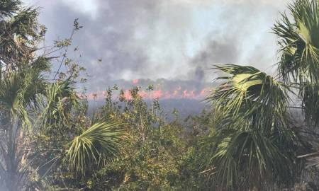 Several crews battle large fire in St Lucie County.