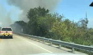 Prescribed burn near Veterans Memorial Parkway