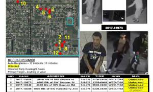 PSLPD Investigating auto burglary spree