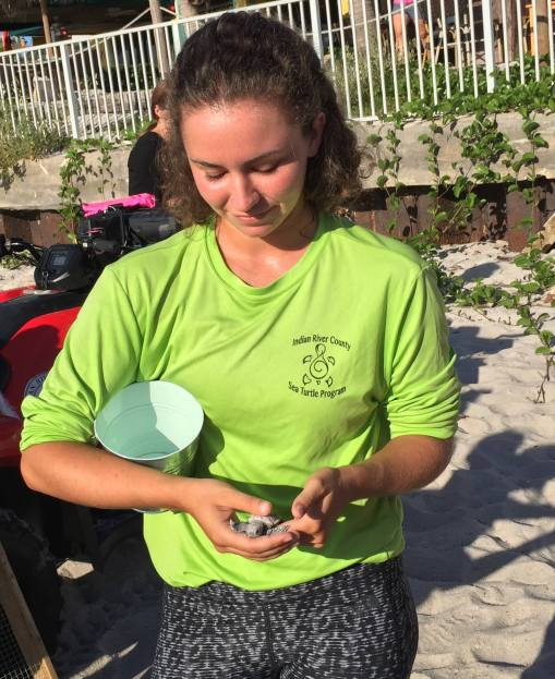 Hatchling saved at IRC Sea turtle nesting dig photo credit; Marlen Hurter