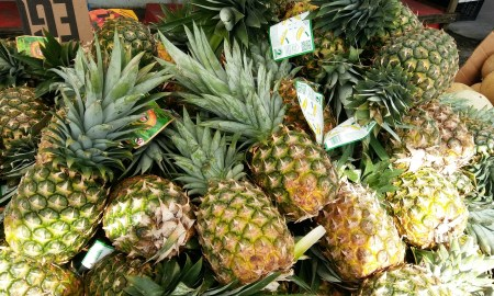 Grow Your Own Pineapples
