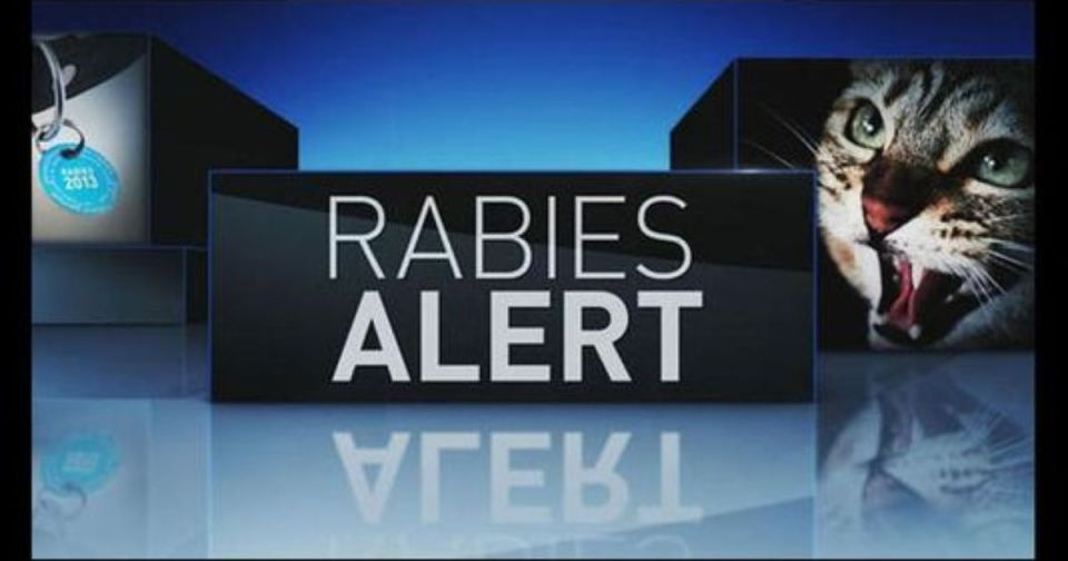 Rabies Advisory St. Lucie County
