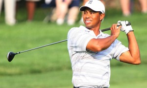 Tiger pleads guilty to reckless driving