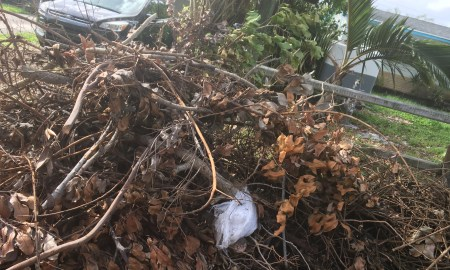 City of Port St. Lucie Hurricane Debris Collection Update