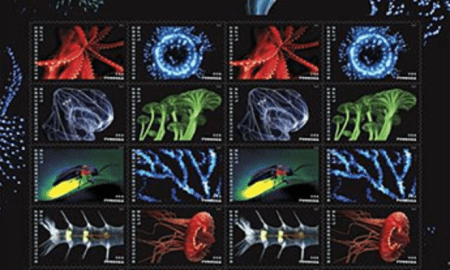 Postage Stamps will feature bioluminescent creatures by ORCA's Edie Widder