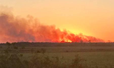 PSL brush fire scorches 120 acres