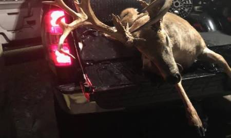 Miami man arrested for illegally killing enormous buck