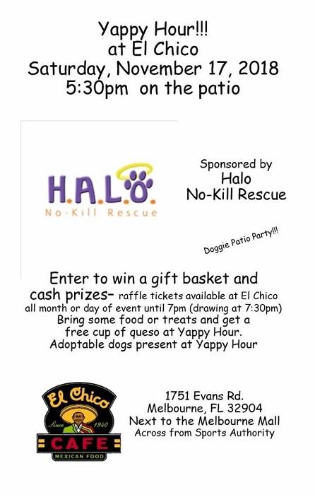HALO's Yappy Hour at El Chico Café Melbourne