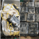 St Lucie Sheriff seizes 57 lbs of cocaine in Ft Pierce