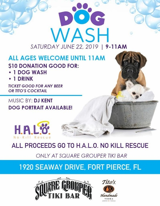 Annual Dog Wash at Square Grouper