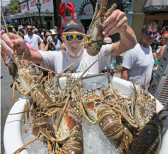 Florida Food Festivals Serve Up Goodies For Foodies