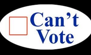 Desantis asks high court to rule on felon voting
