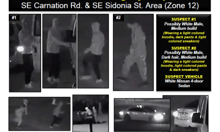 help identifying Auto Burglary Suspects