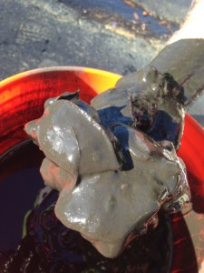 Muck from St Lucie River, 2014.