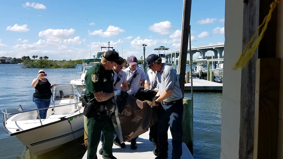 Responders in Indian River County rescue injured Sea Turtle photo: Indian River Sheriff